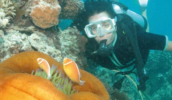 Diving at the Great Barrier Reef in the Whitsundays